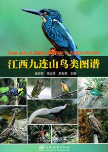 江西九連山鳥類図譜