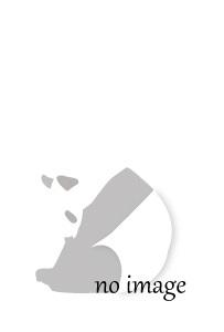 斗山世界大百科事典[第2版]全30冊