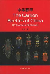 中華葬甲 The Carrion Beetles of China(Coleoptera:Silphidae)
