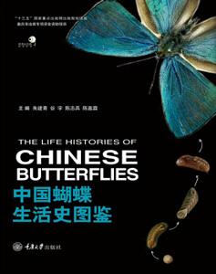 中国蝴蝶生活史図鑑