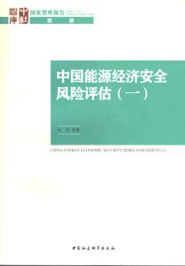 中国能源経済安全風険評估1