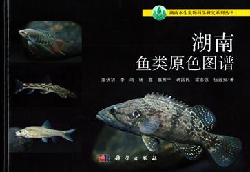 湖南魚類原色図譜