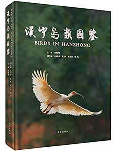漢中鳥類図鑑