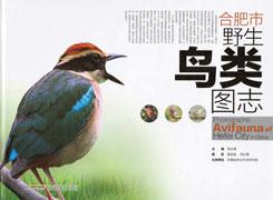 合肥市野生鳥類図誌(安徽)
