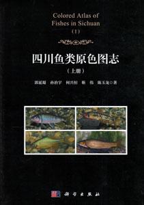 四川魚類原色図誌  上下冊