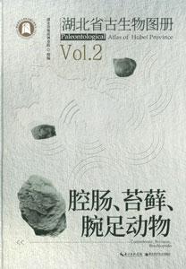 湖北省古生物図冊  VOL2:腔腸、苔蘚、腕足動物