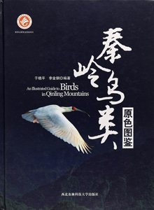秦嶺鳥類原色図鑑