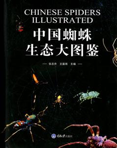 中国蜘蛛生態大図鑑