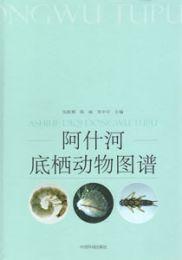 阿什河底棲動物図譜