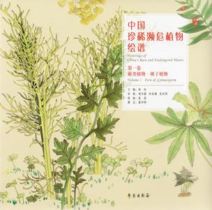 中国珍稀瀕危植物絵譜  第1巻蕨類植物,裸子植物(大衆普及本)