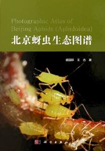 北京蚜虫生態図譜