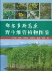 ◆鄂爾多斯高原野生維管植物図鑑