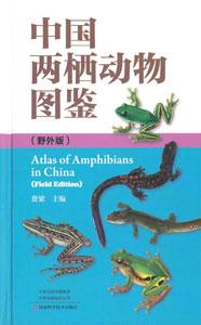 中国両棲動物図鑑(野外版)