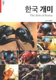 韓国のアリ(韓国本)