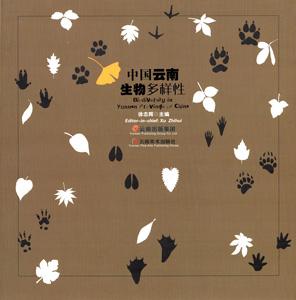 中国雲南生物多様性