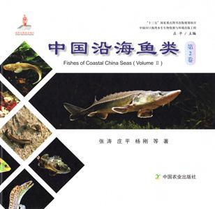 中国沿海魚類  第2巻