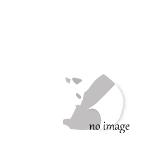 21世紀ウンジン学習百科事典 全22巻(索引含)(韓国本)