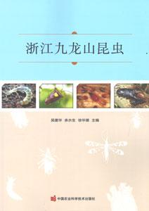 浙江九龍山昆虫