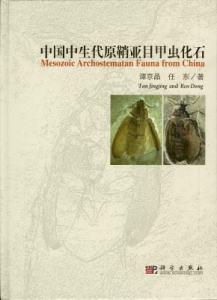 ◆中国中生代原鞘亜目甲虫化石