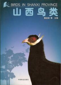◆山西鳥類