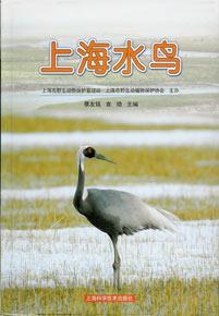 ◆上海水鳥