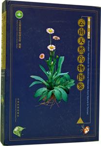 ◆雲南天然薬物図鑑  第3巻