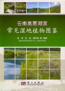 雲南高原湖浜常見湿地植物図鑑