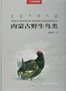 内蒙古野生鳥類