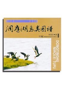 洞庭湖鳥類図譜