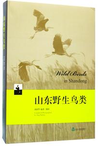 山東野生鳥類