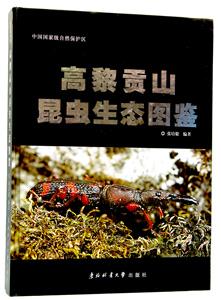 高黎貢山昆虫生態図鑑