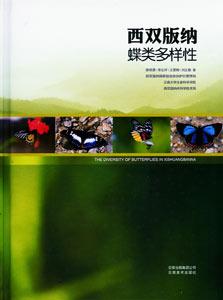 ◆西双版納蝶類多様性