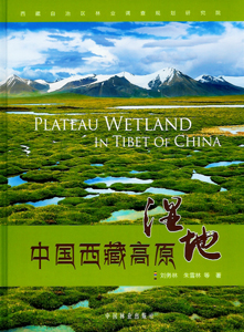 中国西蔵高原湿地