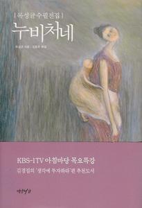 ヌビのおぶい布(韓国本)