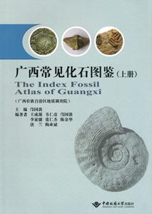 ◆広西常見化石図鑑  上下冊