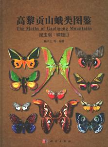 高黎貢山蛾類図鑑