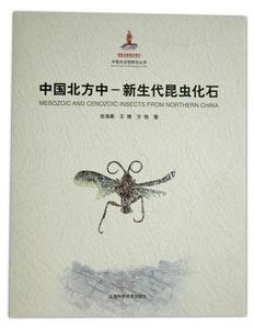 ◆中国北方中-新生代昆虫化石