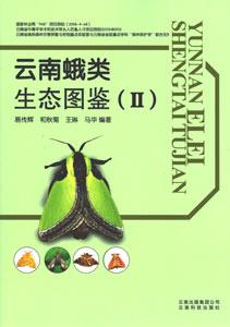 ◆雲南蛾類生態図鑑2