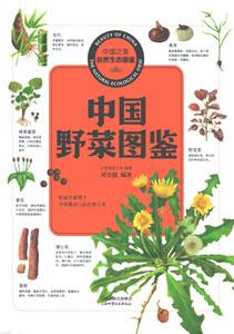 中国野菜図鑑