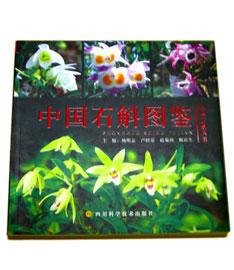 中国石斛図鑑
