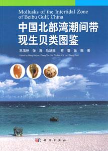中国北部湾潮間帯現生貝類図鑑