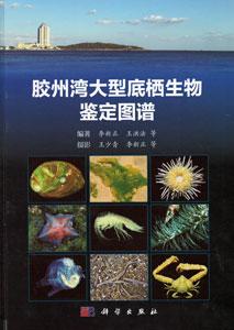 膠州湾大型底棲生物鑑定図譜