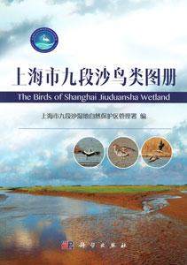 上海市九段沙鳥類図冊