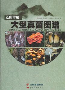 蒼山常見大型真菌図譜