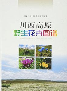 川西高原野生花卉図譜