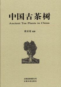 中国古茶樹